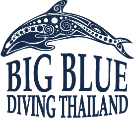 Big-Blue-Diving-Thailand-Logo